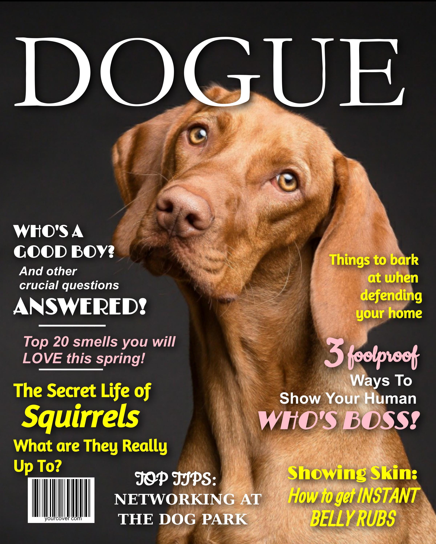 Dogue Fake Magazine Cover