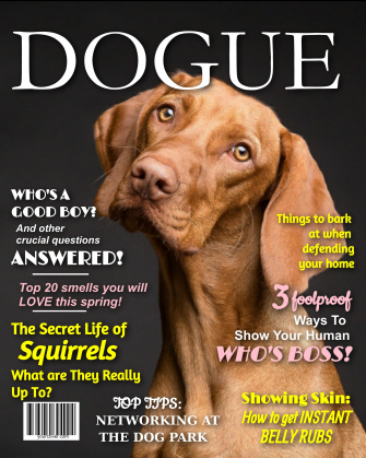 Dogue Fake Magazine Cover